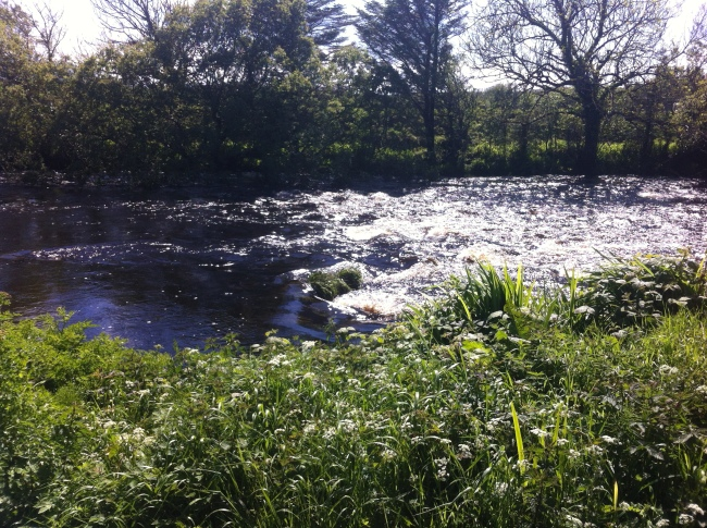 small weir on the Bunowen