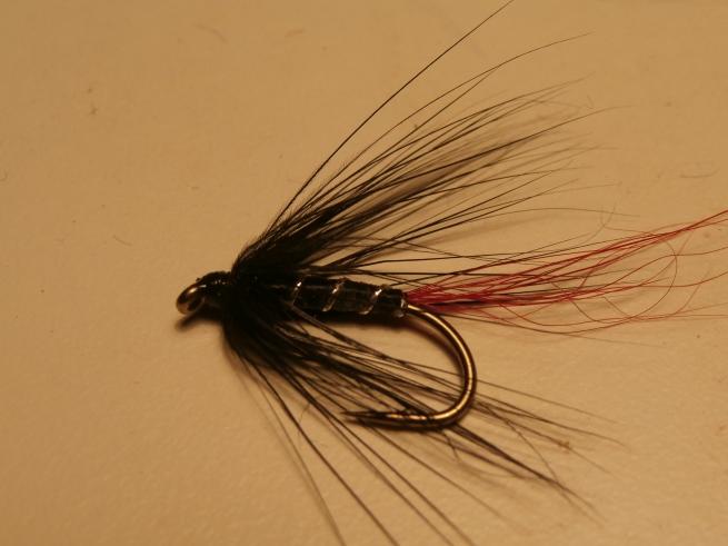 Black Pennel variant