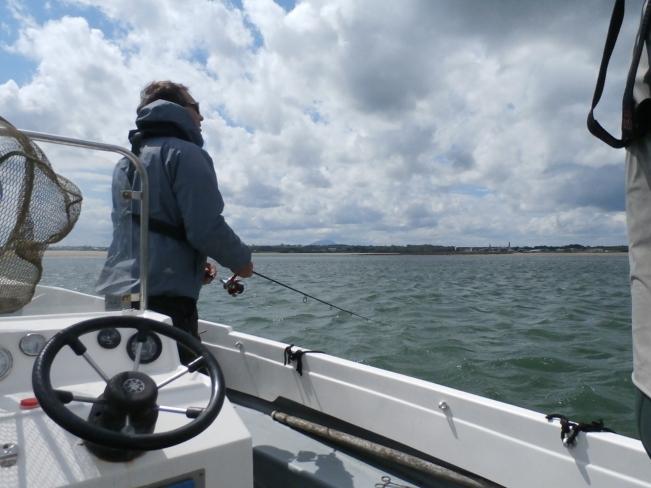 freelining a sandeel bait
