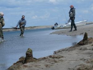 netting sandeels for bait