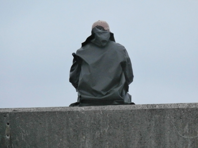 Ben perched on top of the sea wall