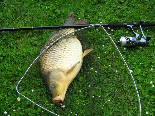 While working in Oxfordshire some years ago I tried my hand at Carp fishing