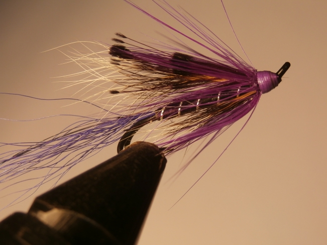 Purple Ally's Shrimp