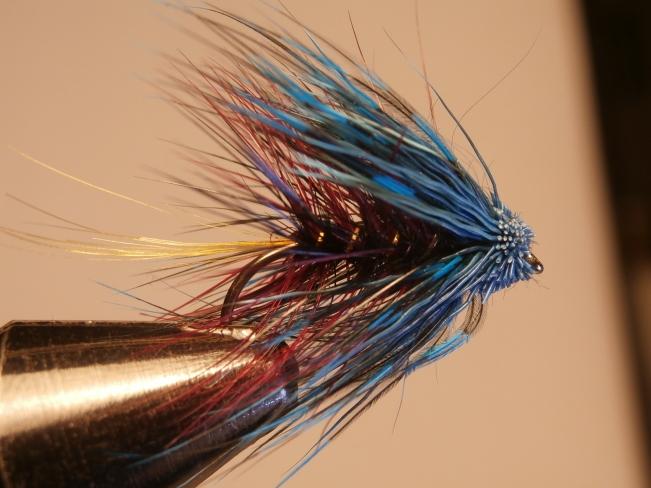 Claret Bumble, blue head