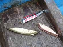 salmon spoons