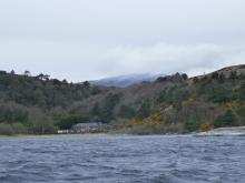 Healy's Bay
