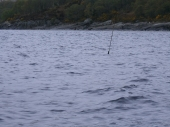 marked pole, Lough Cullin