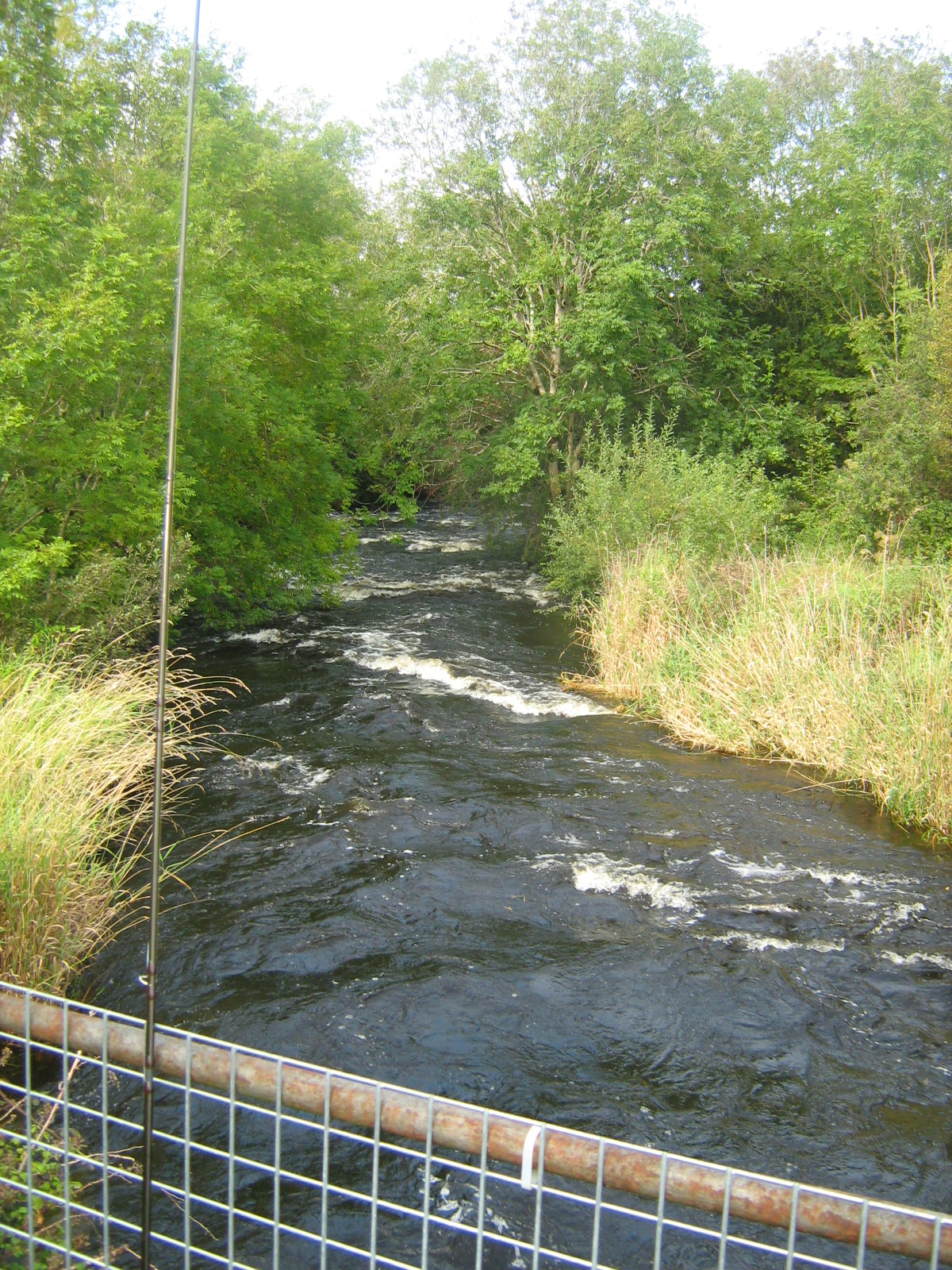 looking-downstream-from-the-bridge