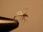 Keeping it simple: a good midge pattern