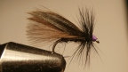 That Black Sedge I was on about…..