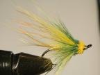 Green Highlander for Lough Beltra