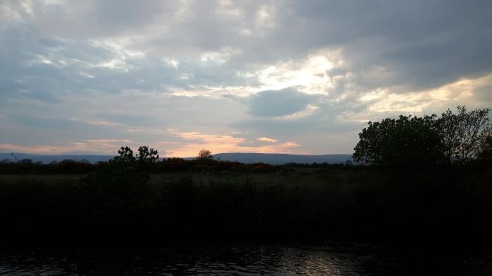 dimming light on a summer's evening