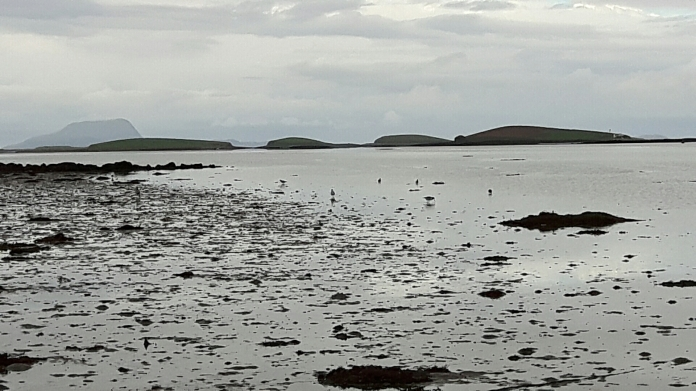 Clew Bay at low water