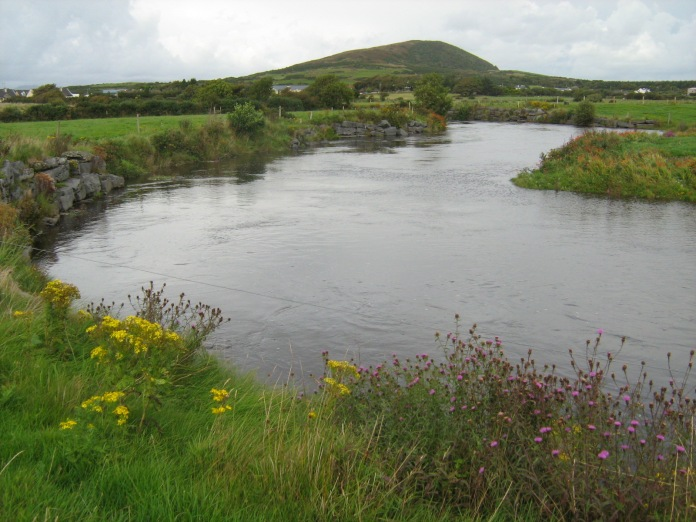 The Bunowen river in Co. Mayo at a nice height