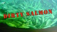dirty salmon