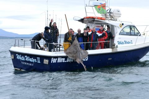 Skipper-Darragh-McGee-lifts-Sean-Fahys-prizewinning-skate-aboard-the-White-Water-II-with-a-little-help-from-his-crew-480x319