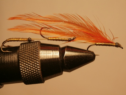 The triple hookfly
